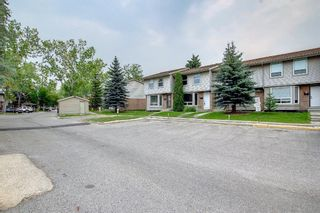 Photo 38: 77 123 Queensland Drive SE in Calgary: Queensland Row/Townhouse for sale : MLS®# A1145434