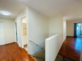 Photo 23: 117 Cameron Crescent: Wetaskiwin House for sale : MLS®# E4265298