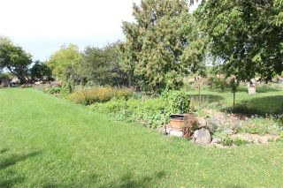 Photo 20: 2344 Highway 12 Road in Ramara: Brechin House (Bungalow) for sale : MLS®# X3615500