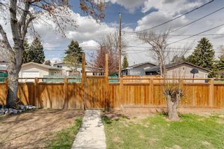 Photo 37: 380 Alcott Crescent SE in Calgary: Acadia Detached for sale : MLS®# A1130065