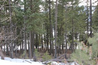 Photo 5: 33 2481 Squilax Anglemont Road in Lee Creek: Land Only for sale : MLS®# 10077079