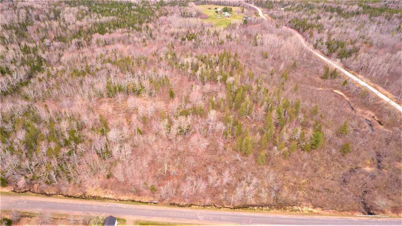 Main Photo: Acreage Peck Meadow Road in Greenfield: 404-Kings County Vacant Land for sale (Annapolis Valley)  : MLS®# 202025328