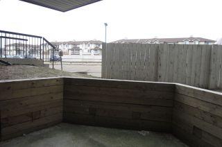 Photo 14:  in Edmonton: Zone 29 Condo for sale : MLS®# E4235734