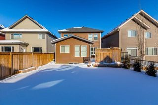 Photo 43: 169 CRANARCH CM SE in Calgary: Cranston House for sale : MLS®# C4226872