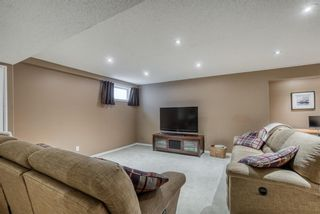 Photo 27: 176 Creek Gardens Close NW: Airdrie Detached for sale : MLS®# A1048124