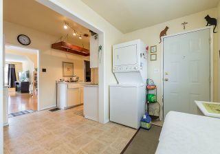 Photo 11: 557 E 56TH AVENUE in Vancouver: South Vancouver House for sale (Vancouver East)  : MLS®# R2385991