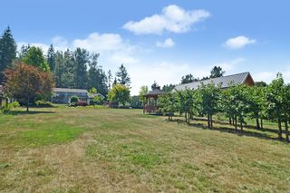 """Photo 11: 24861 40 Avenue in Langley: Salmon River House for sale in """"Salmon River"""" : MLS®# R2604606"""