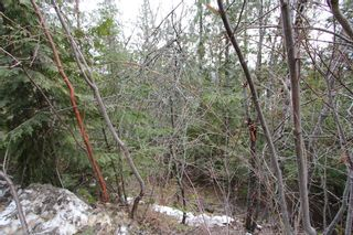 Photo 10: Lot 28 Vickers Trail in Anglemont: North Shuswap Land Only for sale (Shuswap)  : MLS®# 10093853