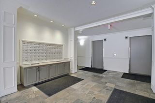 Photo 6: 110 838 19 Avenue SW in Calgary: Lower Mount Royal Apartment for sale : MLS®# A1073517