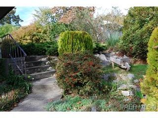 Photo 3: 2528 Forbes St in VICTORIA: Vi Oaklands House for sale (Victoria)  : MLS®# 587827