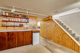 Photo 33: 712 MAPLETON Drive SE in Calgary: Maple Ridge Detached for sale : MLS®# A1018735
