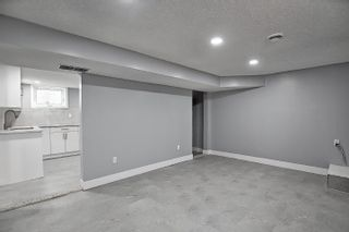 Photo 24: 13036 65 Street in Edmonton: Zone 02 House for sale : MLS®# E4256112