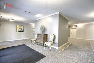 Photo 33: 204 3650 Marda Link SW in Calgary: Garrison Woods Apartment for sale : MLS®# A1143421