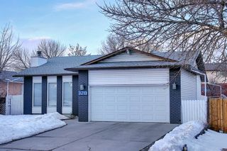 Photo 3: 328 Templeton Circle NE in Calgary: Temple Detached for sale : MLS®# A1074791