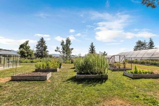 Photo 31: 17456 KENNEDY Road in Pitt Meadows: West Meadows House for sale : MLS®# R2614882