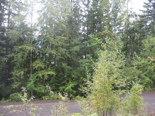 Photo 3: 12 Vickers Trail in Anglemont: Land Only for sale : MLS®# 10055802