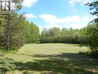 Photo 14: 109063 Township Road  175 in High Level: Vacant Land for sale : MLS®# A1091720