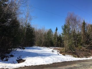 Photo 2: Vacant Lot Dillman Road in Carrolls Corner: 105-East Hants/Colchester West Vacant Land for sale (Halifax-Dartmouth)  : MLS®# 202105953