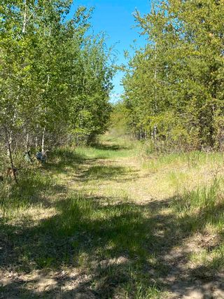 Photo 44: 24402 Township Road 603A: Rural Westlock County House for sale : MLS®# E4247251