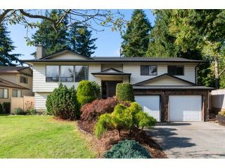 """Photo 1: 1591 132B Street in Surrey: Crescent Bch Ocean Pk. House for sale in """"OCEAN PARK"""" (South Surrey White Rock)  : MLS®# F1430966"""