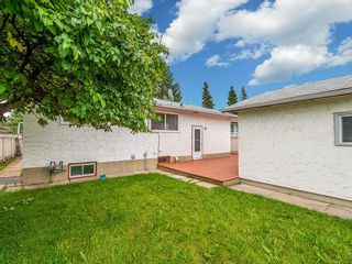 Photo 21: 603 MAIDSTONE Drive NE in Calgary: Marlborough Park Detached for sale : MLS®# C4259121