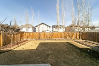 Photo 29: 891 HODGINS Road in Edmonton: Zone 58 House for sale : MLS®# E4239611
