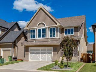 Photo 1: 171 MAHOGANY BA SE in Calgary: Mahogany House for sale : MLS®# C4190642