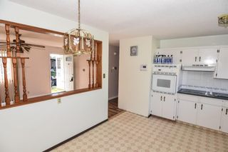 Photo 15: 3127 Rae Crescent SE in Calgary: Albert Park/Radisson Heights Detached for sale : MLS®# A1143749