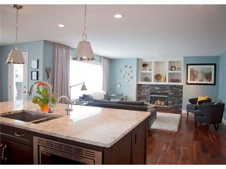 Photo 9: 67 CHAPMAN Way SE in Calgary: Chaparral House for sale : MLS®# C4065212