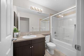 Photo 21: 60 Skyview Shores Gardens NE in Calgary: Skyview Ranch Detached for sale : MLS®# A1132367