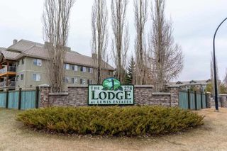 Photo 35: 214 278 SUDER GREENS Drive in Edmonton: Zone 58 Condo for sale : MLS®# E4241668