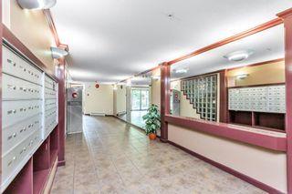 "Photo 10: 412 2439 WILSON Avenue in Port Coquitlam: Central Pt Coquitlam Condo for sale in ""AVEBURY POINT"" : MLS®# R2600398"