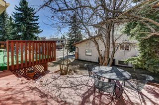 Photo 10: 255 Hawkview Manor Circle NW in Calgary: Hawkwood Detached for sale : MLS®# A1087038