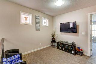 Photo 12: 51 Saddlelake Common NE in Calgary: Saddle Ridge Semi Detached for sale : MLS®# A1085413