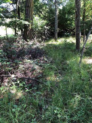Photo 7: 421 FERNHILL Road: Mayne Island Land for sale (Islands-Van. & Gulf)  : MLS®# R2470182