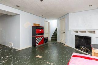 Photo 35: 28 GREER Crescent: St. Albert House for sale : MLS®# E4253444