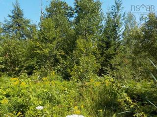 Photo 7: Lot M-1 127 Charleswood Drive in Windsor Junction: 30-Waverley, Fall River, Oakfield Vacant Land for sale (Halifax-Dartmouth)  : MLS®# 202121061
