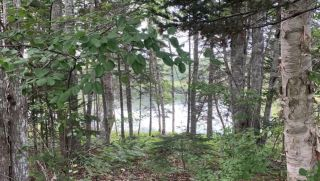 Photo 17: 5111 Little Harbour Road in Little Harbour: 108-Rural Pictou County Residential for sale (Northern Region)  : MLS®# 202102738