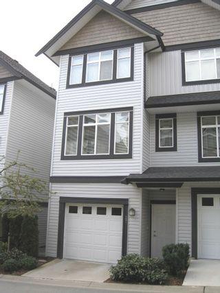 Photo 4: # 27 19932 70TH AV in Langley: Condo for sale : MLS®# F1009337