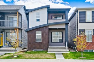 Main Photo: 163 Howse Lane NE in Calgary: Livingston Detached for sale : MLS®# A1115389