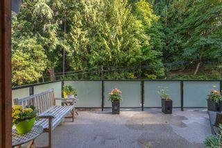 Photo 38: 836 Haliburton Rd in Saanich: SE Cordova Bay House for sale (Saanich East)  : MLS®# 887149