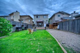 Photo 8: 39 Erin Green Way SE in Calgary: Erin Woods Detached for sale : MLS®# A1118796