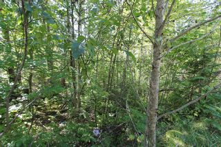 Photo 10: Lot 90 Birch Close: Land Only for sale : MLS®# 10071170