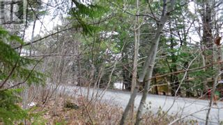 Photo 8: Lot Medway River Road in Mill Village: Vacant Land for sale : MLS®# 202108227