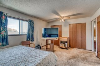 Photo 9: 160 Edgedale Way NW in Calgary: Edgemont Semi Detached for sale : MLS®# A1149279