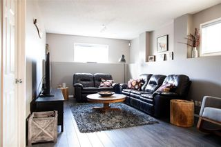 Photo 27: 144 COPPERFIELD Manor SE in Calgary: Copperfield Detached for sale : MLS®# C4300694