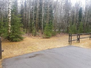 Photo 3: 50117 Boyce Ranch Road W: Bragg Creek Land for sale : MLS®# A1043771