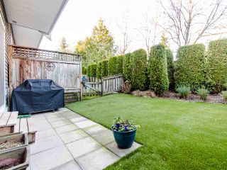 """Photo 17: 150 20449 66 Avenue in Langley: Willoughby Heights Townhouse for sale in """"NATURES LANDING"""" : MLS®# R2422981"""