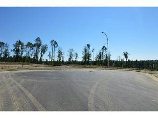 """Photo 8: LOT 19 BELL Place in Mackenzie: Mackenzie -Town Land for sale in """"BELL PLACE"""" (Mackenzie (Zone 69))  : MLS®# N227312"""