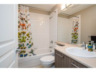 """Photo 24: 10 7938 209 Street in Langley: Willoughby Heights Townhouse for sale in """"Red Maple Park"""" : MLS®# R2557291"""